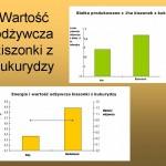 Wartość odżywcza kiszonki z kukurydzy